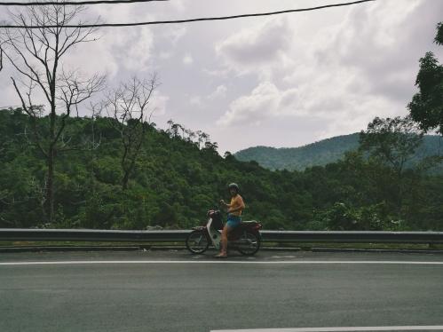Džungļu pauguri un ceļš