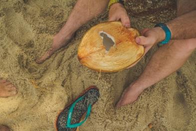 Paša rauts, paša lobīts, paša pārdaudzīts kokosrieksts