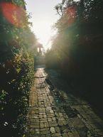 Saule sveicina mani pa ceļam uz maniem sveicieniem saulei